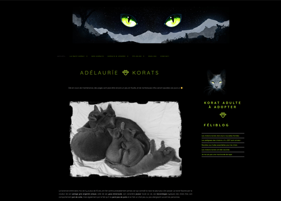 création de site internet pour éleveur de chats, une rousse à la rescousse à Albi dans le Tarn